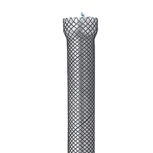 fully covered stent from mte